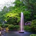 写真: 兼六園 噴水