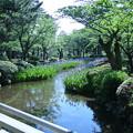 Photos: 花見橋から