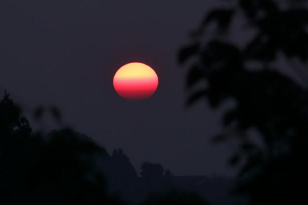 猛暑の夕日(1)