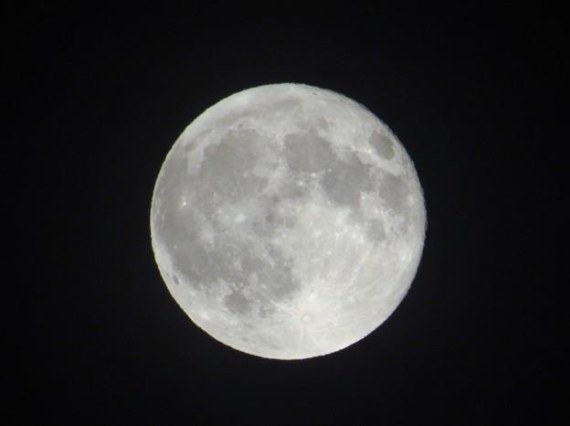 真夏の満月