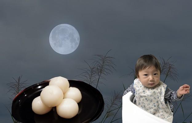 写真: ススキと満月と月見団子