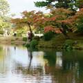 兼六園 蓬莱島 紅葉