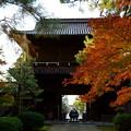 写真: 天徳院 玉姫の寺(山門)