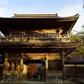 天徳院 玉姫の寺(山門)