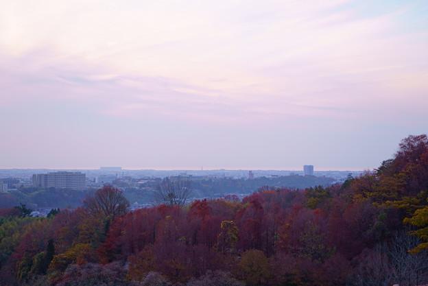 夕焼けと紅葉(1)