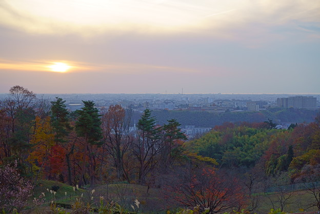 夕焼けと紅葉(2)