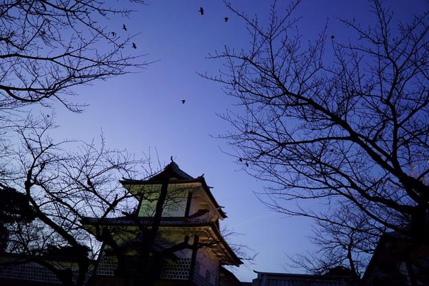 夕暮れの石川門とカラス
