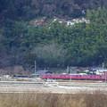 Photos: JR415系電車?  コハクチョウが一羽だけ映っていました。