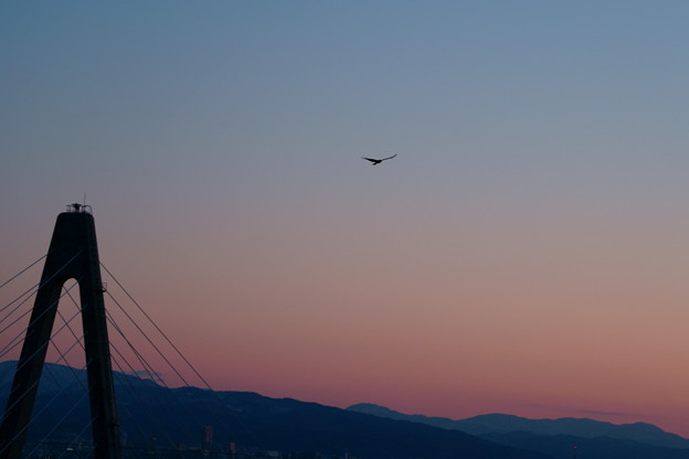 サンセットブリッジと山並み  残照