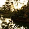 写真: 兼六園 霞が池の蓬莱島(右) 夕日