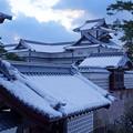 金沢城    雪