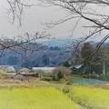 Photos: 里山の風景