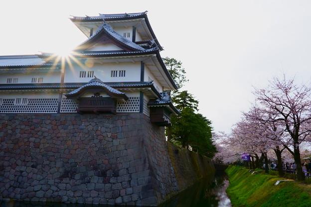 金沢城 菱櫓とお堀の桜