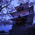 金沢城 菱櫓と桜 観桜期ライトアップ