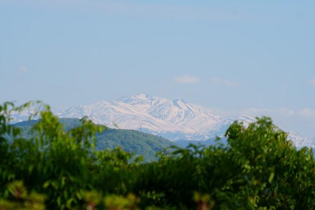 春の白山(2) 雪形?