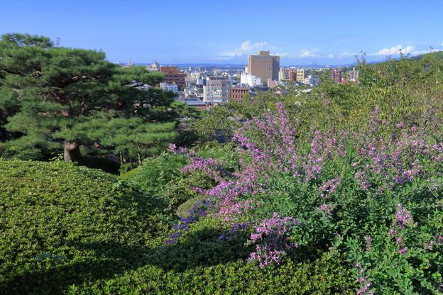 兼六園 眺望台から 萩と街並み