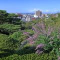 Photos: 兼六園 眺望台から 萩と街並み