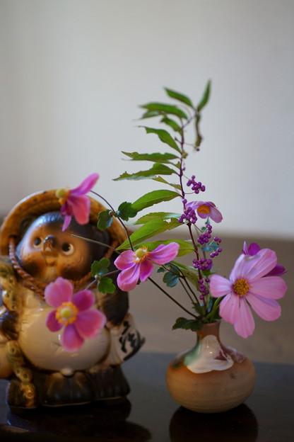 狸と秋の花