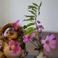 Photos: 狸と秋の花