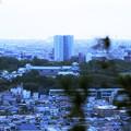 卯辰山見晴台から 金沢城と街並み