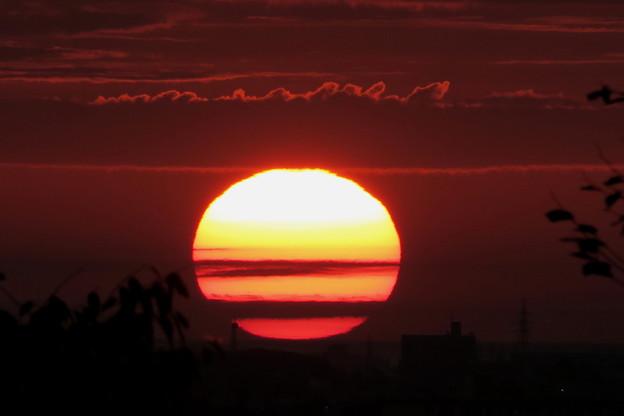 夕陽(1)