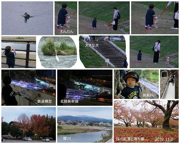 Photos: いしかわ子ども交流センター 鉄道模型 犀川とわんちゃん