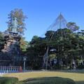 Photos: 日本武尊の像 お花松(手向松 )の雪吊り