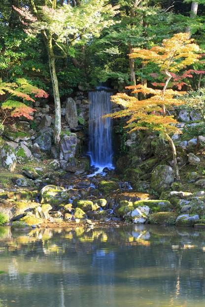 Photos: 兼六園 翠滝とモミジ