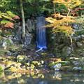 兼六園 翠滝とモミジ