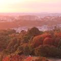 Photos: 街並みと紅葉