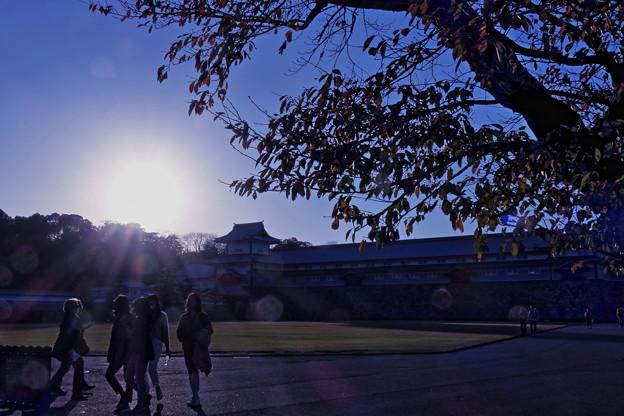 金沢城 夕日と紅葉