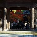 Photos: 天徳院 山門