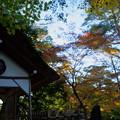 Photos: 兼六園 山崎山の東屋