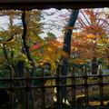 Photos: 兼六園 山崎山  東屋