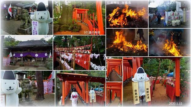 石浦神社 左義長  101基の鳥居