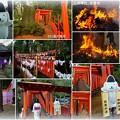 Photos: 石浦神社 左義長  101基の鳥居
