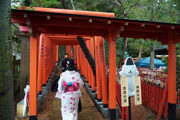 石浦神社 101基の鳥居