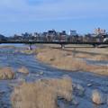 犀川と街並み