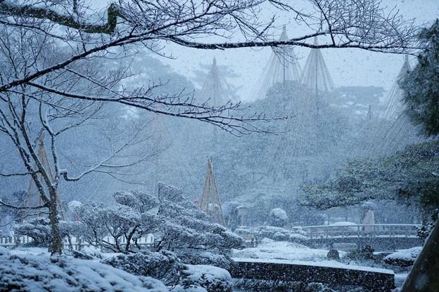 兼六園 雪景色(1)