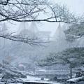 兼六園 雪景色(2)