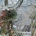 兼六園 雪景色