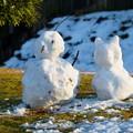 Photos: 公園の雪ダルマ