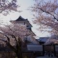 Photos: ★石川門3