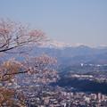 卯辰山見晴台から 桜と山並み