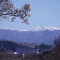 Photos: 山並み  大門山(加賀富士) 見越山 大笠山 奥三方岩(右)?