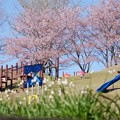 Photos: 奥卯辰山健民公園 わんぱく広場