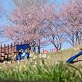 奥卯辰山健民公園 わんぱく広場