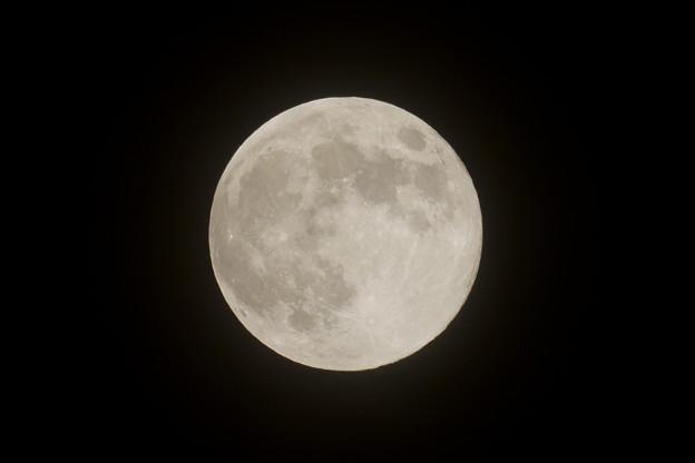 満月(2)