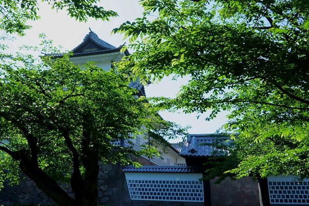 新緑の石川門