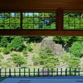 新緑の玉泉院丸庭園1(金沢城公園)